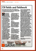Oil Fields and Fieldwork, A Guide to Market Research in Qatar